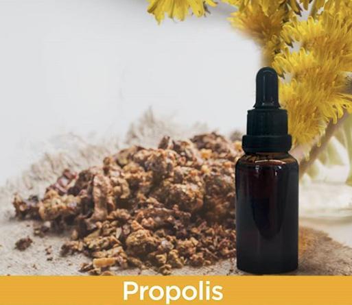 propolis nelere iyi gelir
