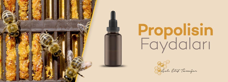 propolisin faydalari nelerdir?