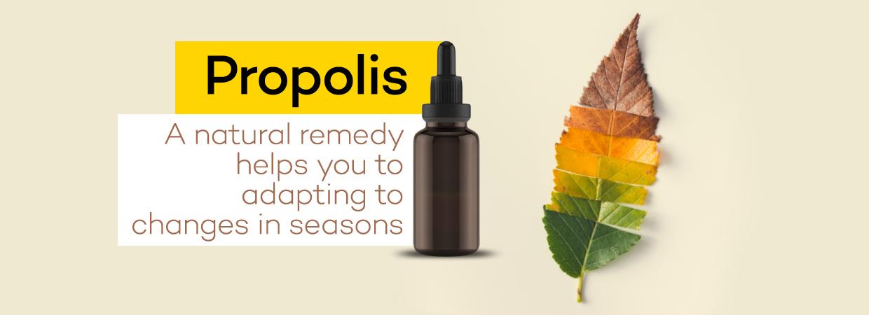 mevsim geçişlerinde propolis nasıl kullanılmalı